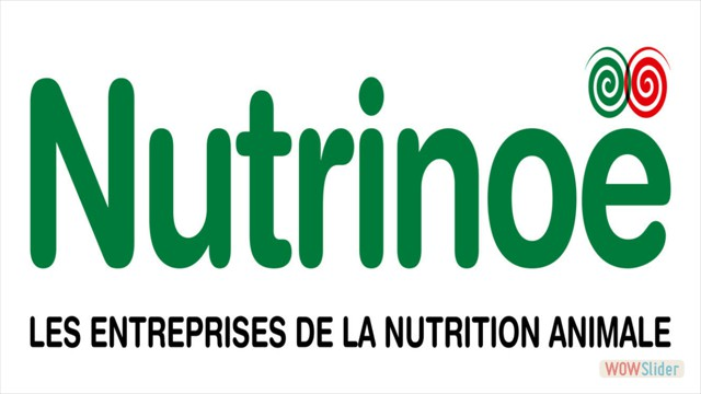 IRP Nutrinoe (FILEminimizer)
